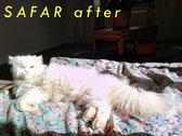 Cat Shelter [Otis Foundation] 1€ Donation photo