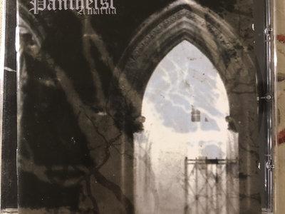 Pantheist- Amartia CD main photo