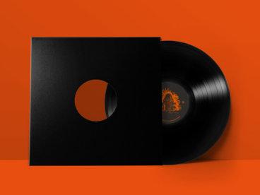 "1x12"" Vinyl main photo"