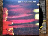 Pink Flamingos - Les Nuits Injustes LP photo