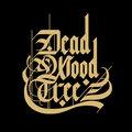 Deadwood Tree image