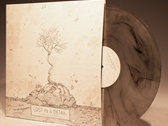 The Nothing Is Spreading - BUNDLE Vinyl and CD photo