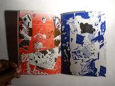 Ch!ps (Artist Book) photo