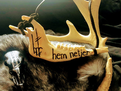 Medium Deer Jawbone 002 main photo