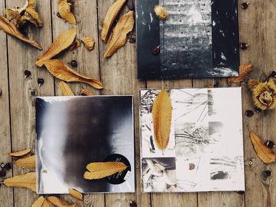 3 Vinyl Autumn Box Set main photo