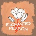 Enchanted Reason image