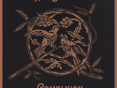"""Companion (Extended Edition)"" on 180 Gram Vinyl main photo"