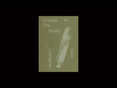 Nico Callaghan – Snakes In The Grass main photo