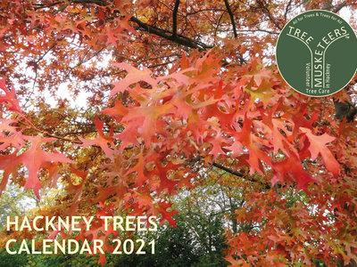 Hackney Trees Calendar 2021 main photo