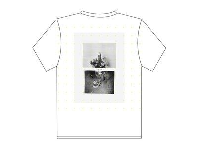 Various II – T-shirt main photo