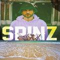 Spinz image