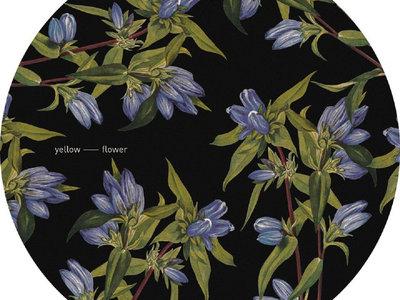 YFBUNDLE1 - 14 Yellow Flower Records main photo