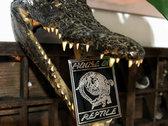 House of Reptile - Chrome Enamel Pin photo