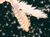 Feather Artprint photo