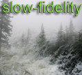 Slow-Fidelity image