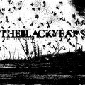 The Black Years image