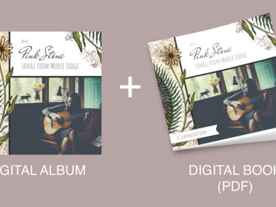 Pink Stone Digital Package (Digital Album + Companion Book PDF w/ lyrics) main photo