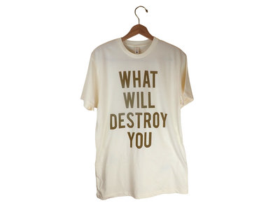 What Will Destroy You main photo