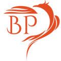 Blind Phoenix image