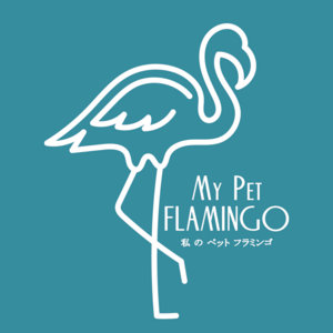 mypetflamingo.bandcamp.com