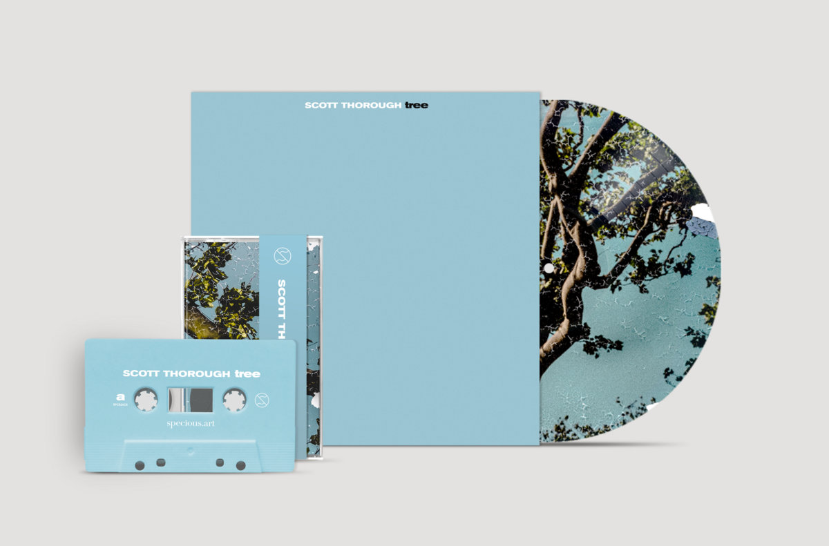 Blue 7 inch vinyl and compact cassette tape versions of Scott Thorough's second solo album, tree, against a gray background.