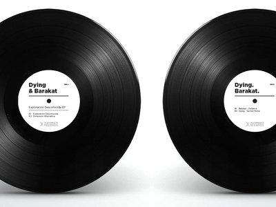 Special offer: Vinyls + Bag main photo
