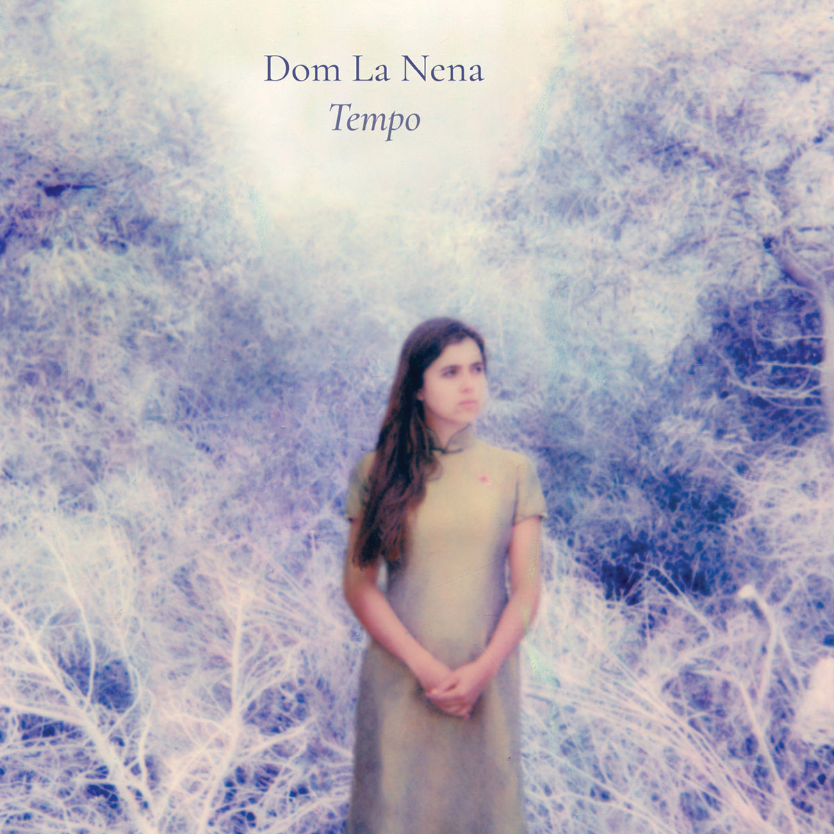 """Dom La Nena, """"Tempo"""""""