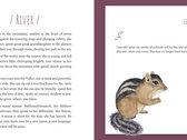 Pink Stone Companion Book (includes lyrics) - PDF version photo