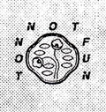 Not Not Fun Records image