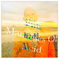 The Manacles Of Acid image