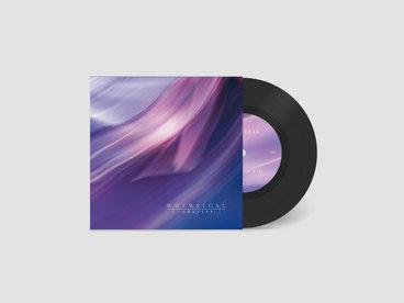 "Limited Edition 7"" Vinyl main photo"
