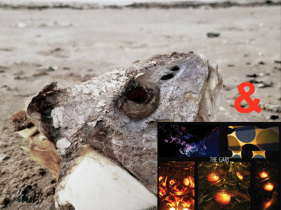 "The Gary - ""Fallow"" 12"" EP with ""El Camino"" 12"" EP main photo"