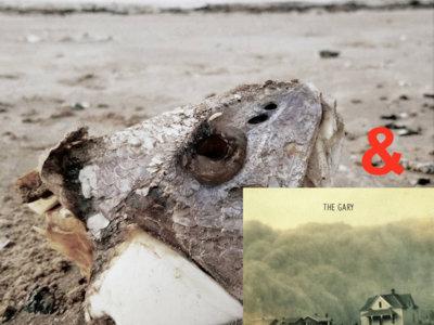 "The Gary - ""Fallow"" 12"" EP with ""Logan"" 12"" CD main photo"