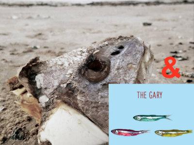 "The Gary - ""Fallow"" 12"" EP with ""Chub"" 12"" CD main photo"