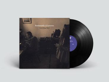 12 inch Vinyl LP - Searching Skies main photo
