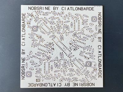Ciat-Lonbarde Nobsrine PCB main photo