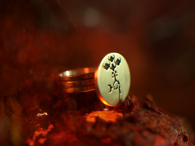Limited Edition Silver Signet Ring with Emblem main photo