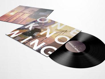 Full Sleeve Vinyl Edition (Second Press) main photo