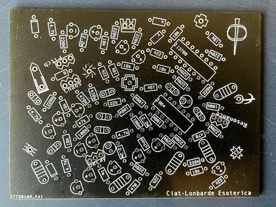Ciat-Lonbarde Esoterica Spikering PCB main photo