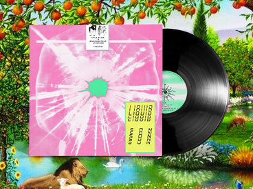 Vinyl LP in Full Artwork Sleeves main photo