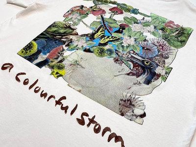 Glenn Donaldson - A Colourful Storm T-Shirt main photo