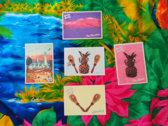 Maraca album - SPECIAL EDITION book / CD + postcards + download photo