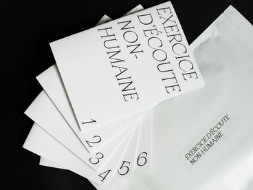Zines Collection, Pack of Six main photo