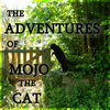 The Adventures Of Mojo The Cat Cover Art