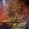 Slidecamp Cover Art