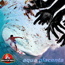 Aqua Placenta cover art
