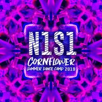 N1S1 cover art