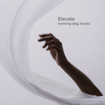 Elevate cover art
