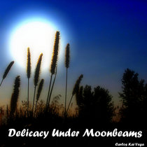 Delicacy Under Moonbeams cover art