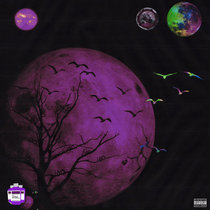 1017 vs The World | Chopped & Screwed cover art